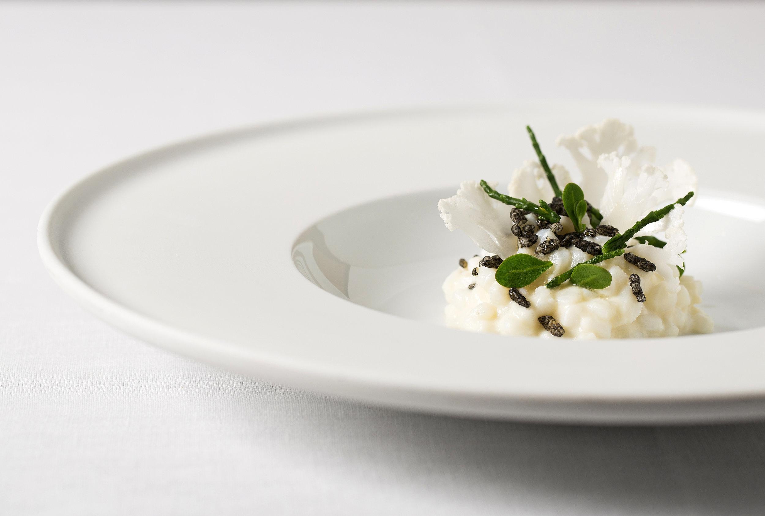 Line caught Devon squid cooked in cauliflower, roasted squid juices, ink rice _ sea herbs (2).jpg