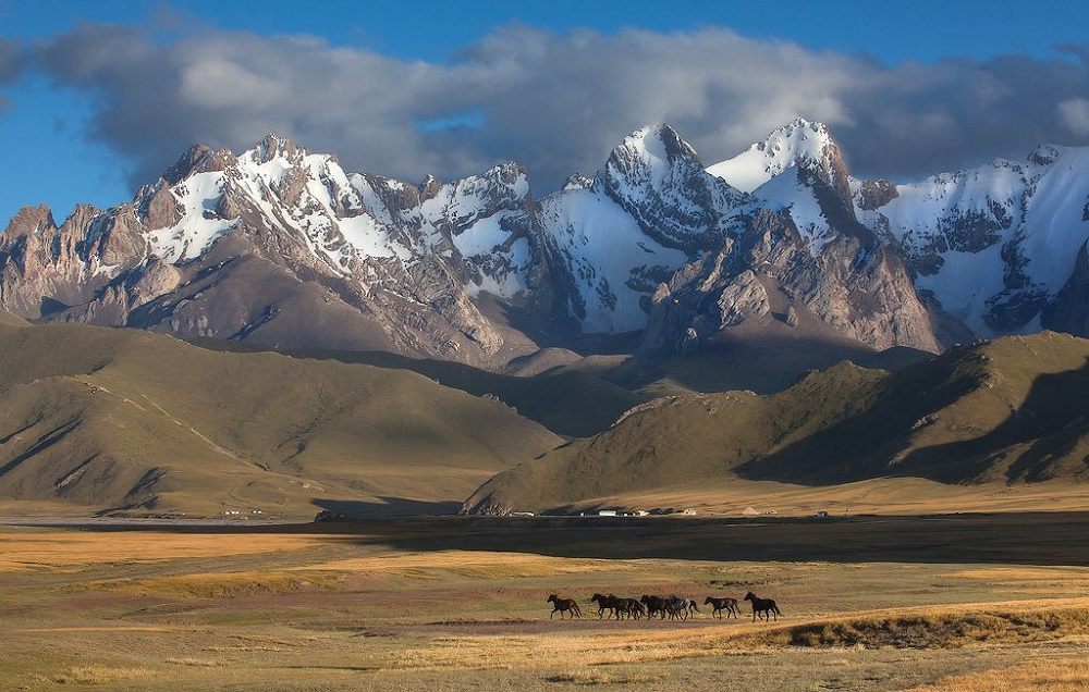 Central Asia:Looming Threats from ISIS to Climate Change  -