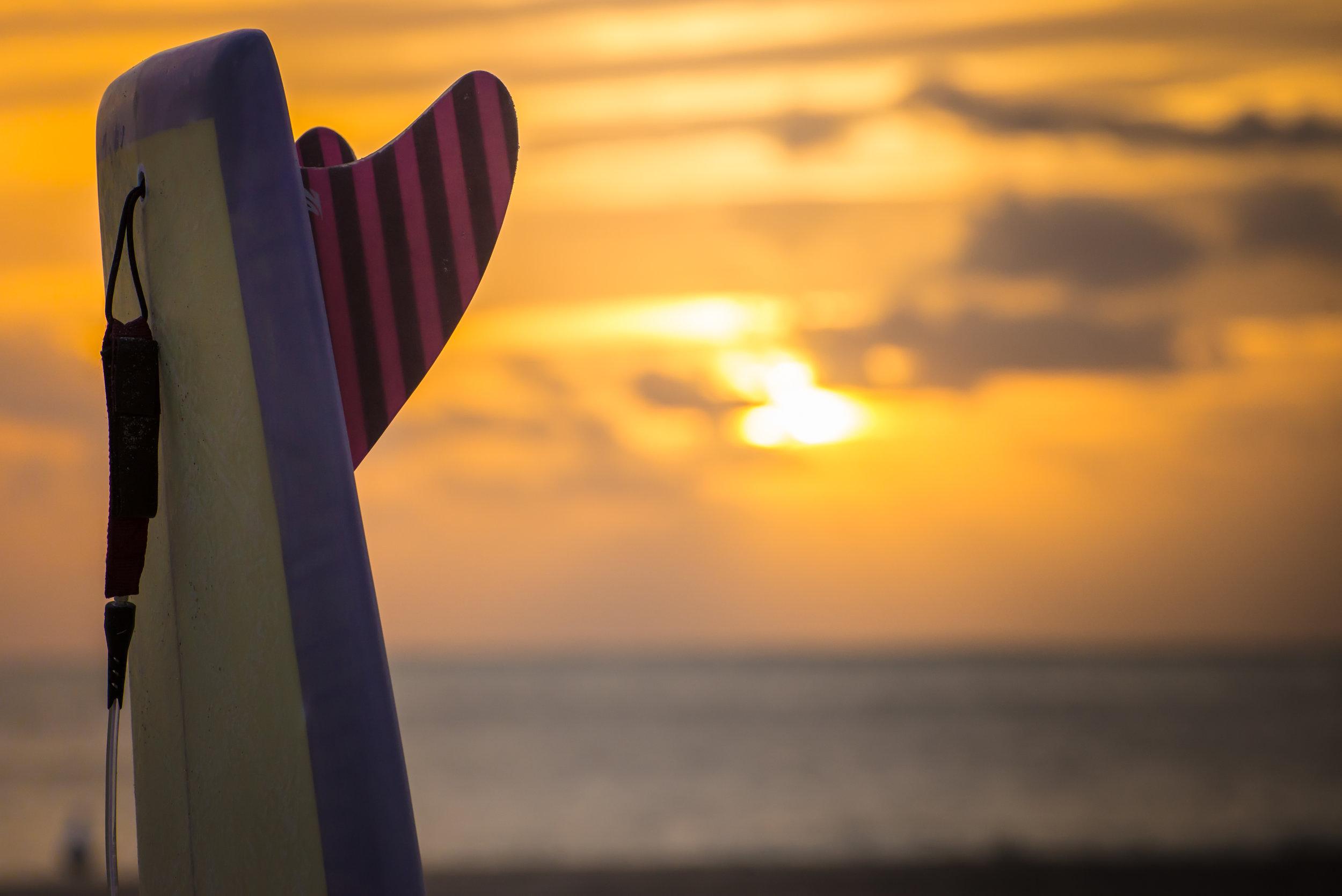 Locus-Monkeywing-Tail-Sunset.jpg