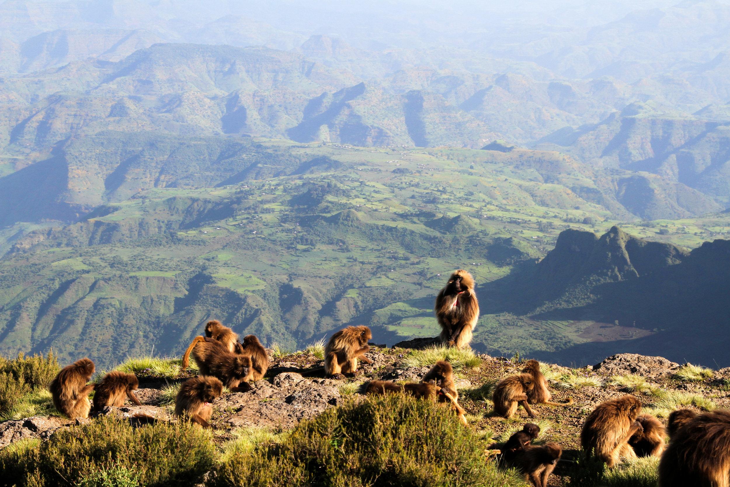 Gorgeous Ethiopia-50.jpg