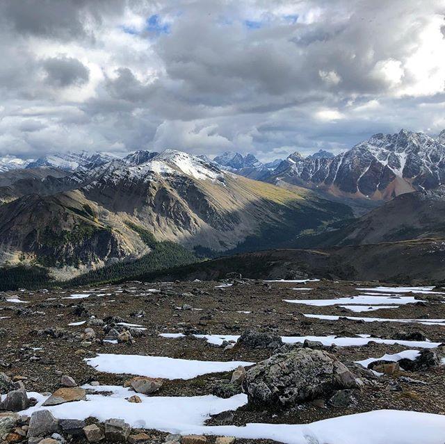 Mountains for Miles #whistlerspeak #jasperskytram #jasper #jaspernationalpark #canada #mountains #landscape #view #cablecar #snowinsummer #summerthrowback #topofjasper #topoftheworld