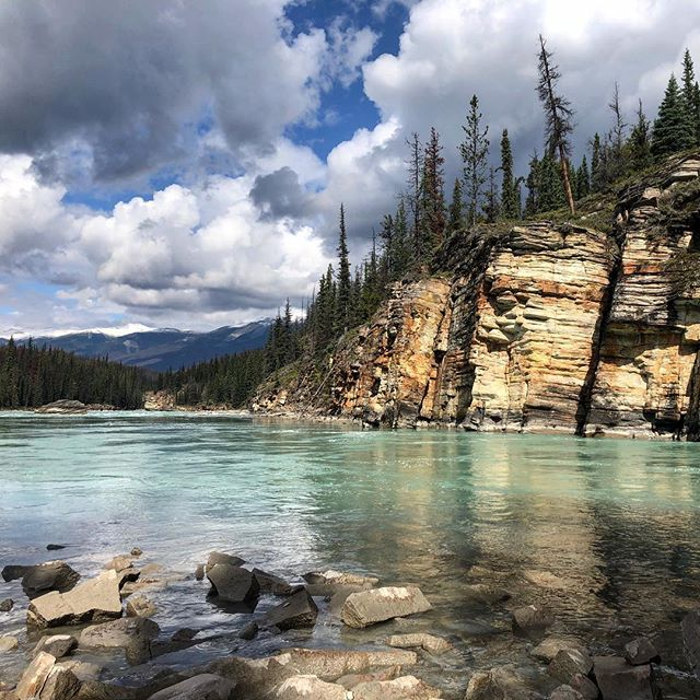 Athabasca Falls #Jasper #athabascafalls #jaspernationalpark #canada #geology #galcialwater #colours #rockstrata #summerthrowback