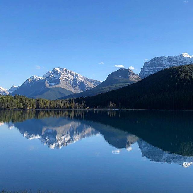 Reflections #Canada #jaspernationalpark #banffnationalpark #roadtrip #view #viewpoint #reflections #water #mountains #summerthrowback