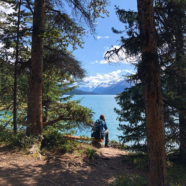 Momentary Reflection #jaspernationalpark #malignelake #lakemaligne #spiritisland #jasper #mountains #canada #trees #view #summerthrowback