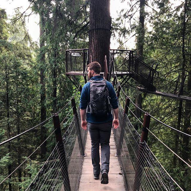 Walking in the Trees, Capilano Suspension Bridge Park . . . #vancouver #vancouverbc #northvancouver #canada #capilanosuspensionbridge #suspensionbridge #trees #bridge #bridgewalk #walkinginthetrees #summer #summerthrowback