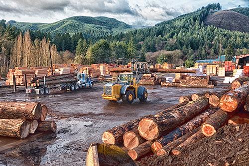 commercial-industries-wood-thumb.jpg