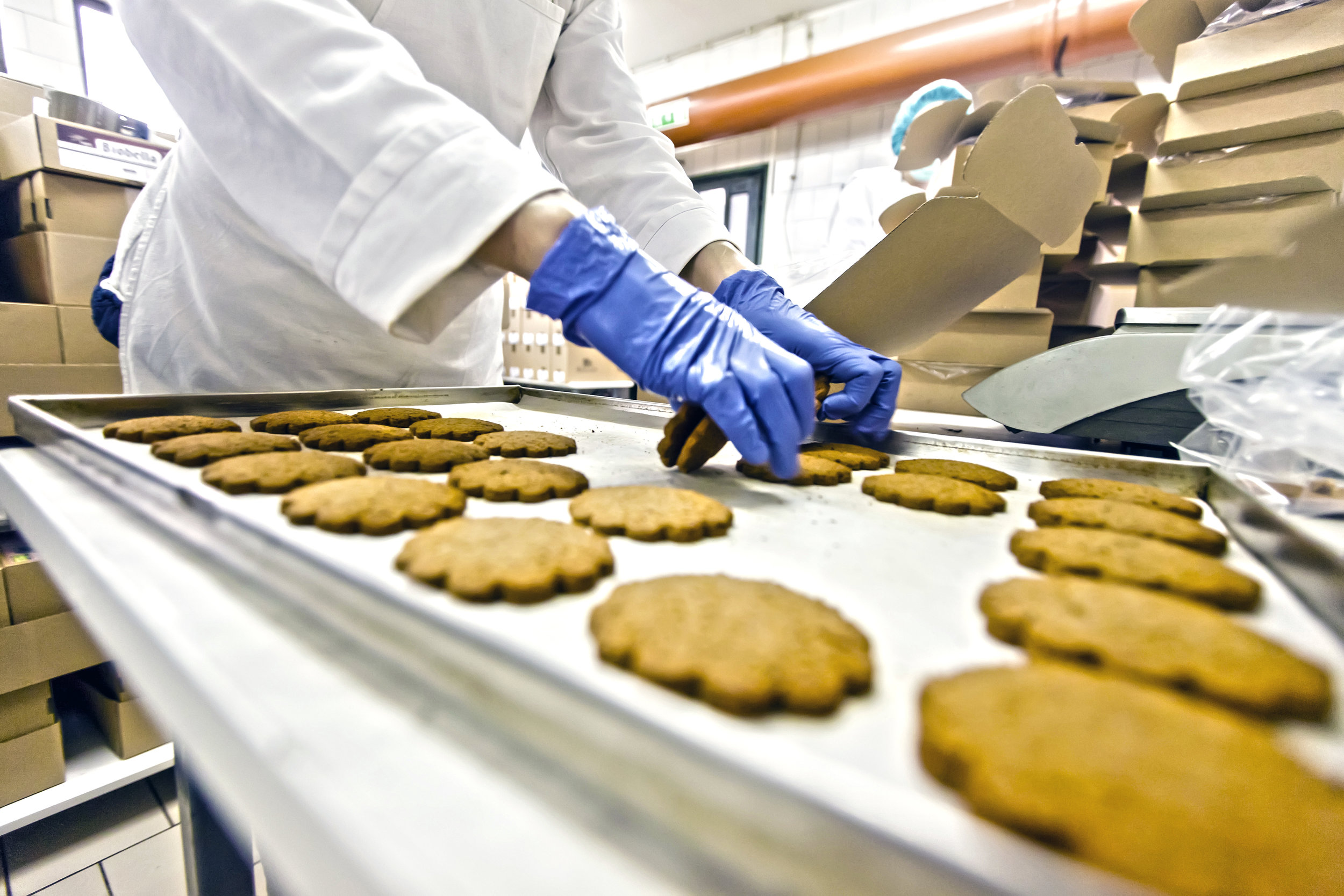Food Processing - Learn More
