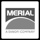 merial-vision-development-construction-atlanta-georgia-commercial-general-contractor
