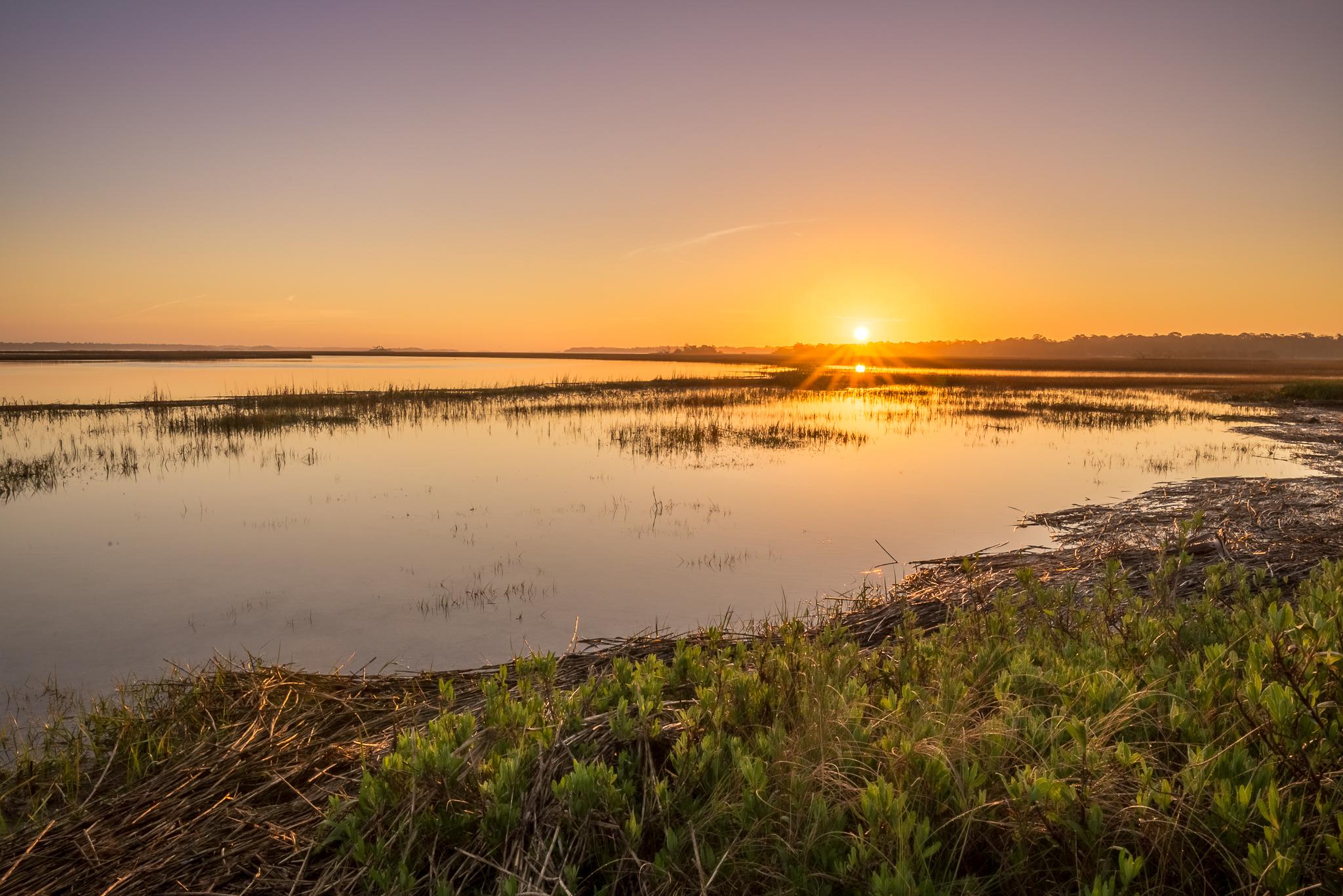 landscape-of-marsh-at-sunrise
