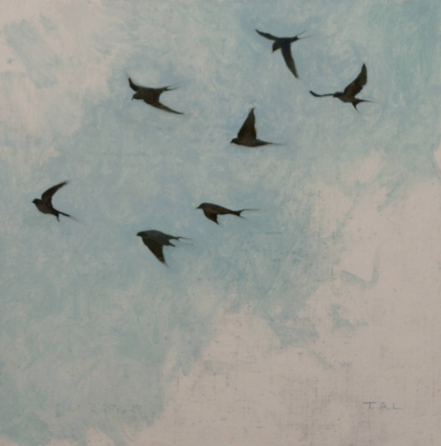 Swallow Studies, oil on linen, 12 x 12 in.