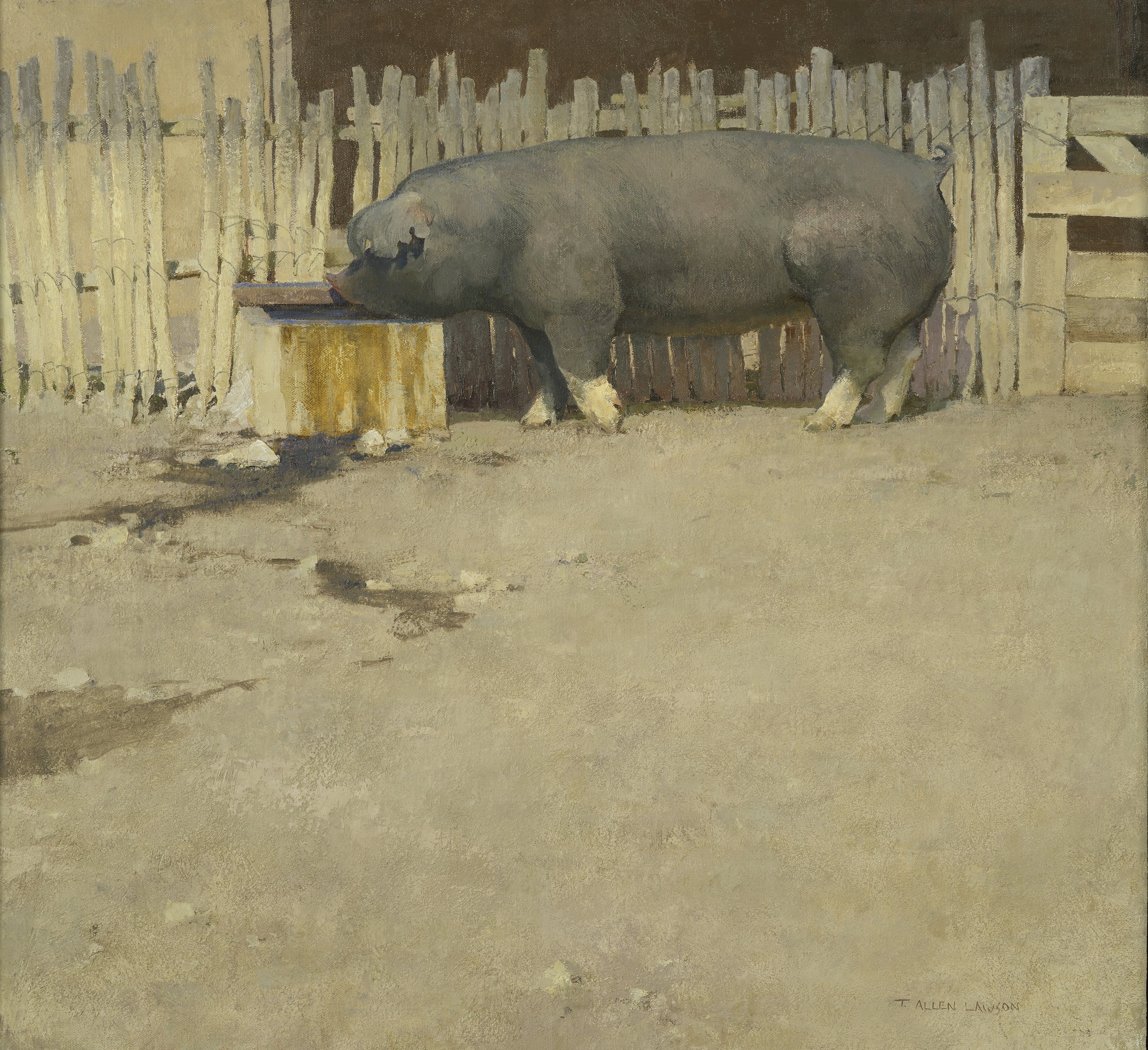 Pig, oil on linen over panel, 26 x 28in.