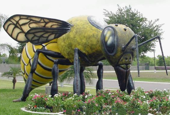 """World's Largest Killer Bee, Hidalgo, TX South American bees first crossed the border into the U.S. in Hidalgo in 1960, and to the town's mayor, this was a sweet deal. He milked the publicity, proclaiming Hidalgo the """"Killer Bee Capital of the World"""" and commissioning this $20,000 mascot.  https://www.topixoffbeat.com/slideshow/19342 Stacie Hougland"""