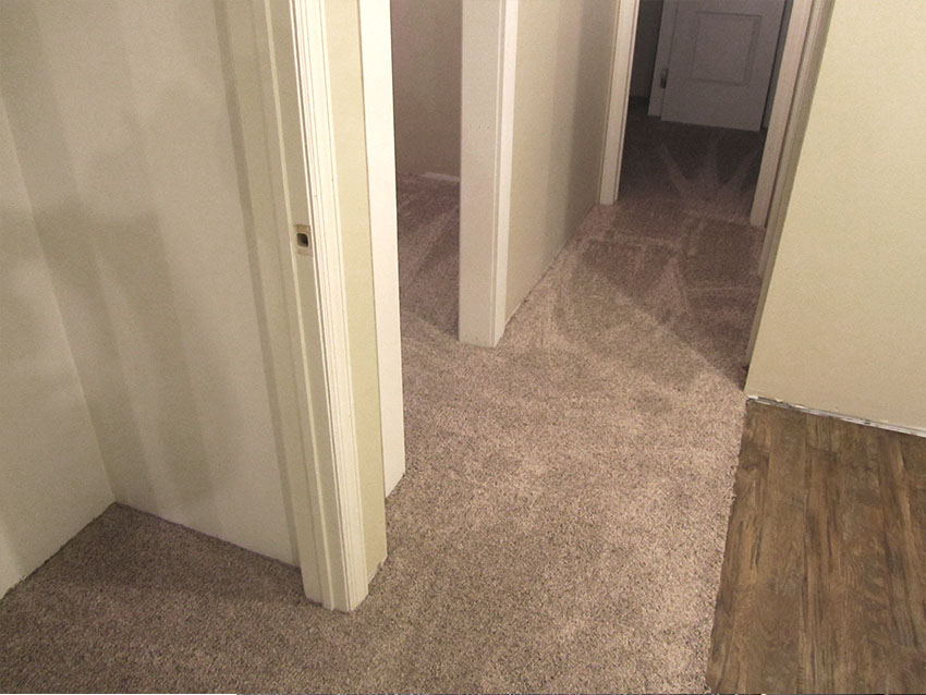 IMG_0658-mike-marinari-cut-pile-carpet-vinyl-basement-gehman-4-mailchimp-web-d-&-s-flooring.jpg