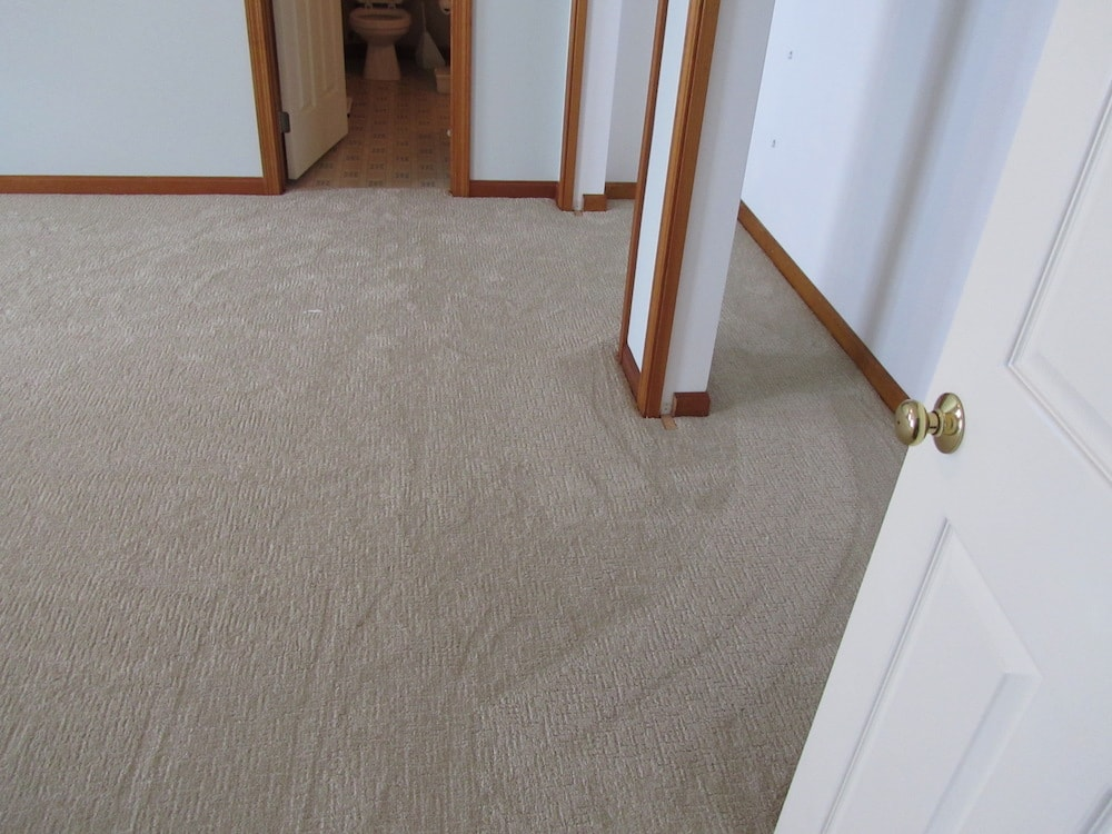 mike-marinari-carpet-IMG_0829 copy-min.jpg