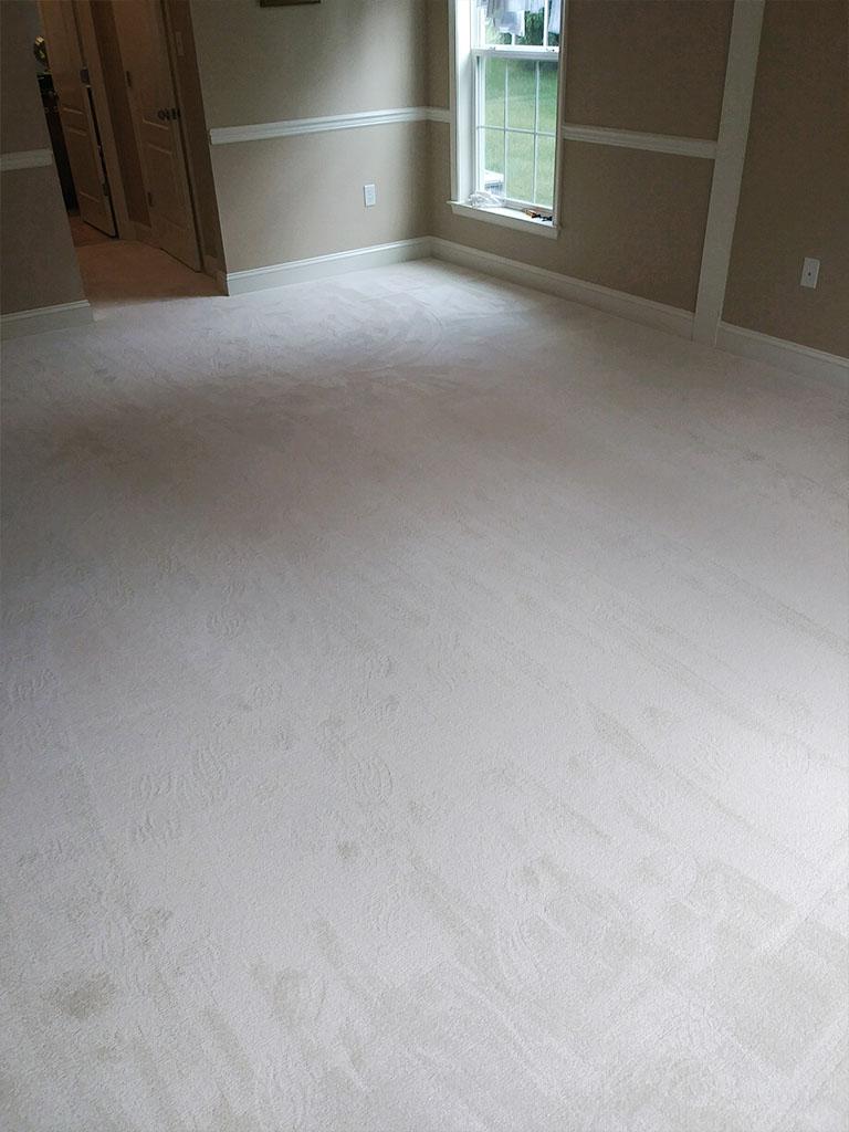carpet-residential-oravetz-web-2-lancaster-pa-september-2018-aa-dandsflooring.jpg