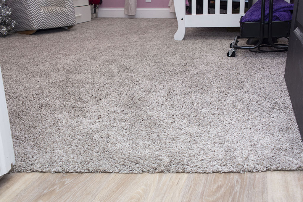 IMG_9479-carpet-web-brownstown-pa-shenk-december-2018-dandsflooring.jpg