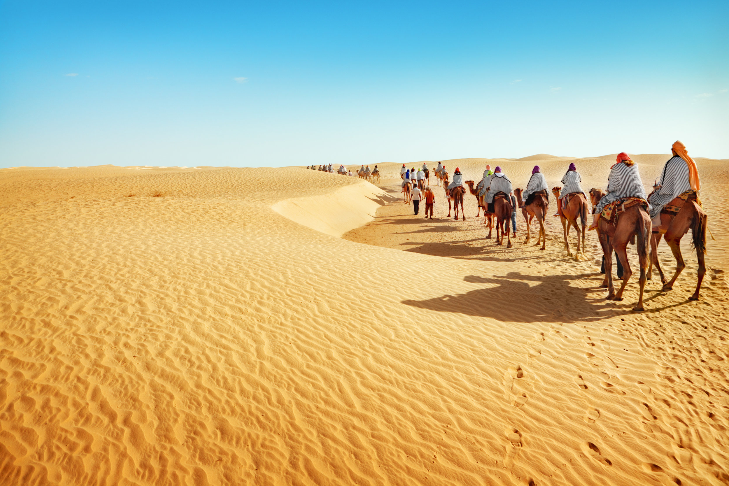 20. Fellow nomads! - The Sahara Desert, located in Africa,is 3.6 million square miles in size and is currently growing at the rate of half a mile per month. That is nearly the size of the United States! Most of the people who live in the Sahara Desert are nomads.