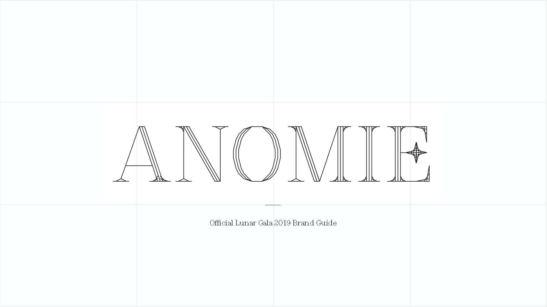 AnomieBrandAudit_Page_02.png