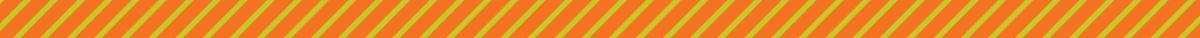 Lakshmi_OrangeDivider_1200x100.jpg