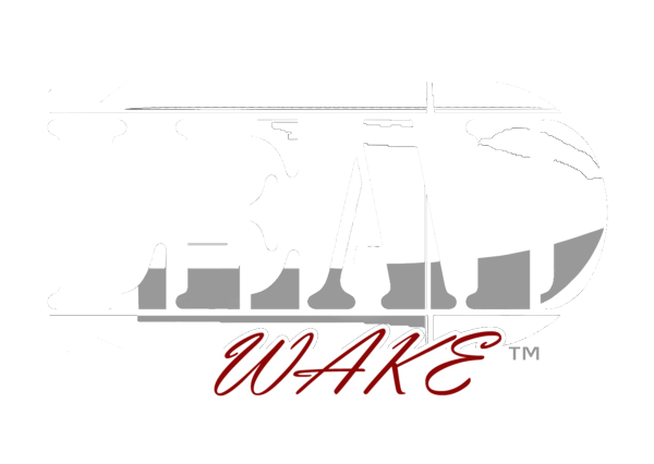 lead_wake_logo.png