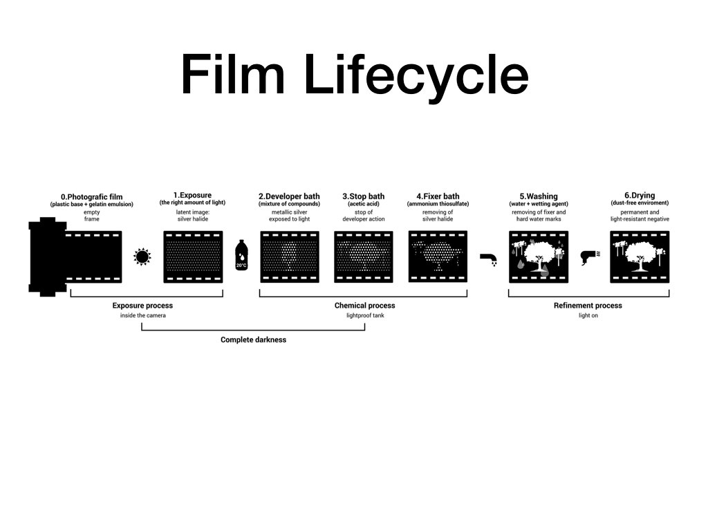 Film 101.009.jpeg
