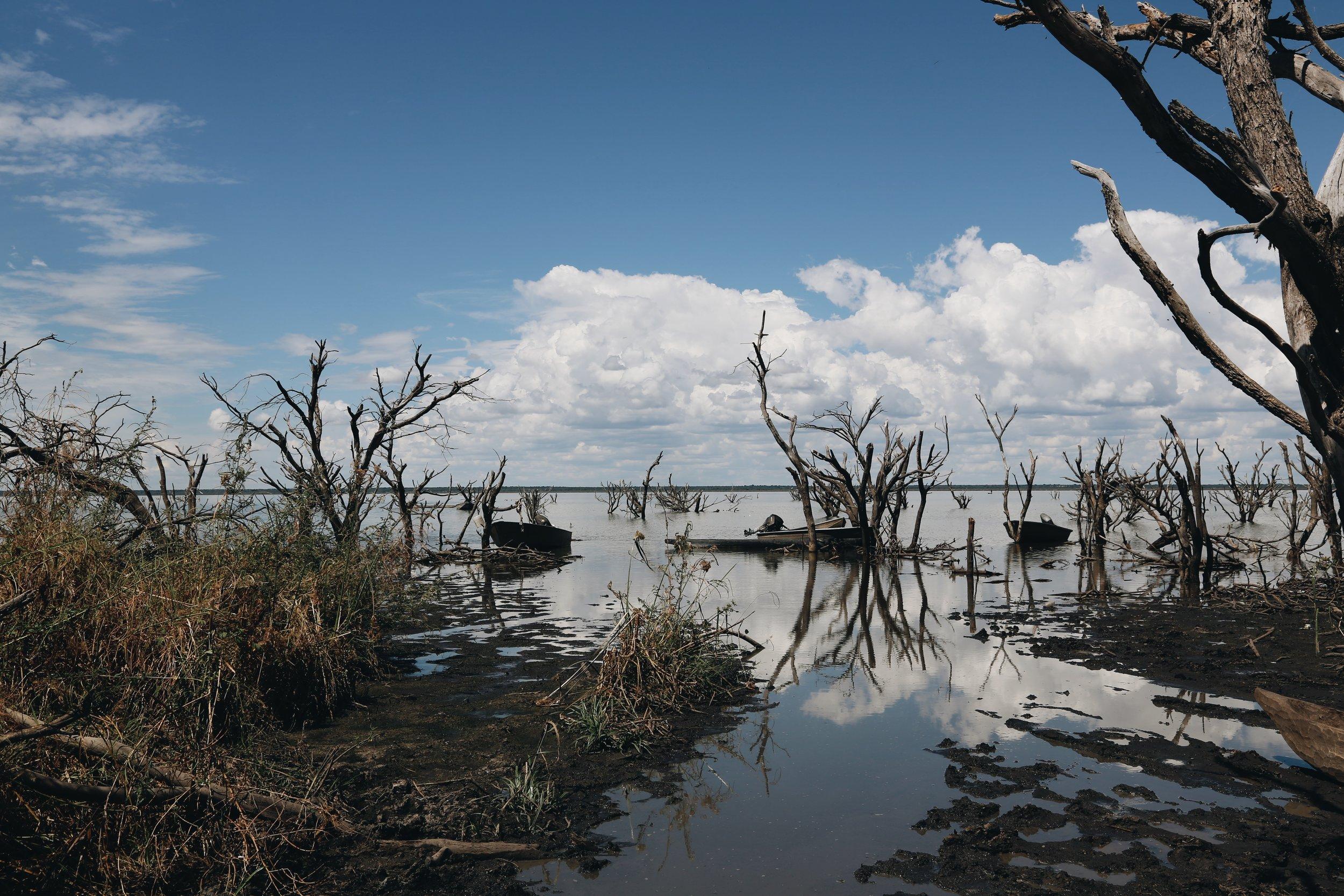 Lake Ngami, Botswana