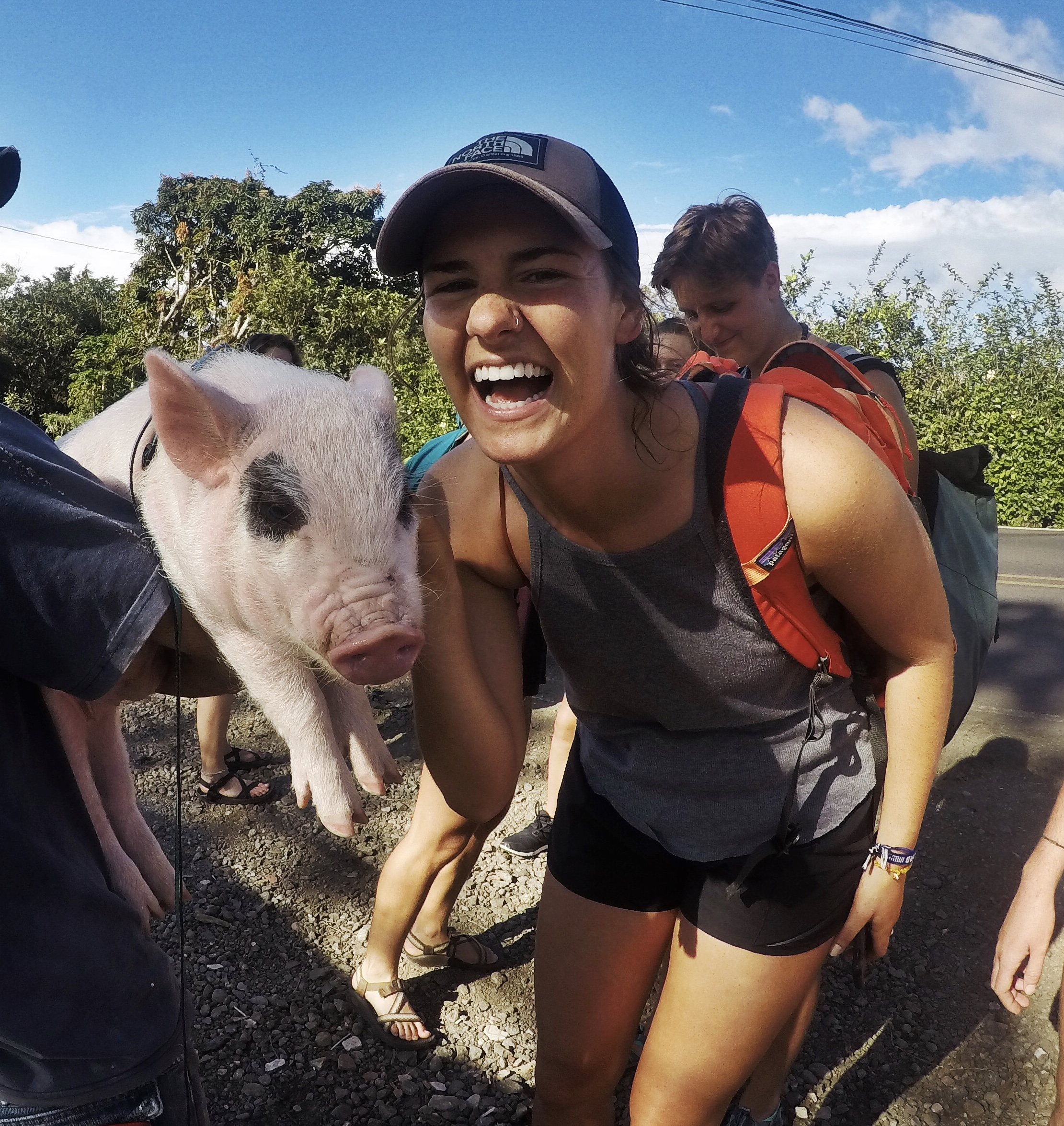 Carli meeting a friendly pig in Costa Rica!