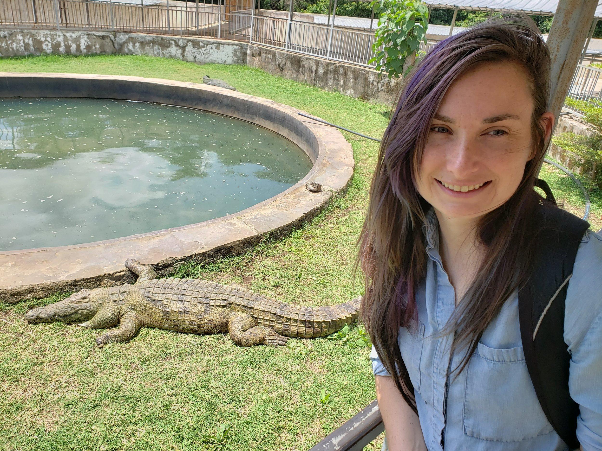 Crocodiles!