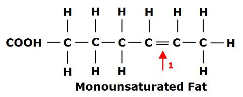 mono fat bonds.png