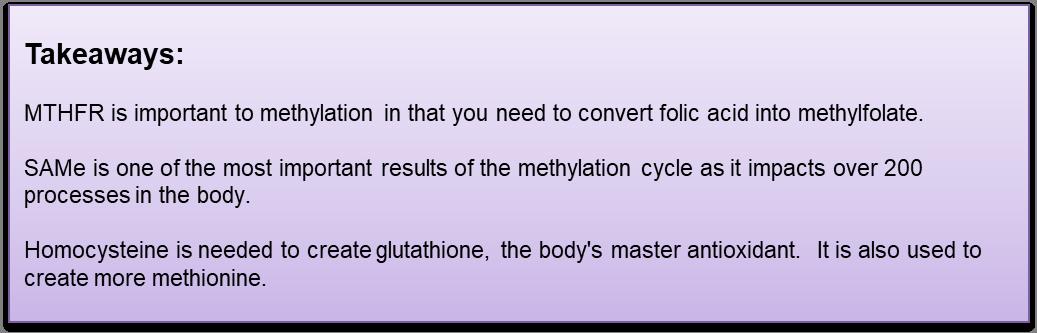 methyl takeaways.png