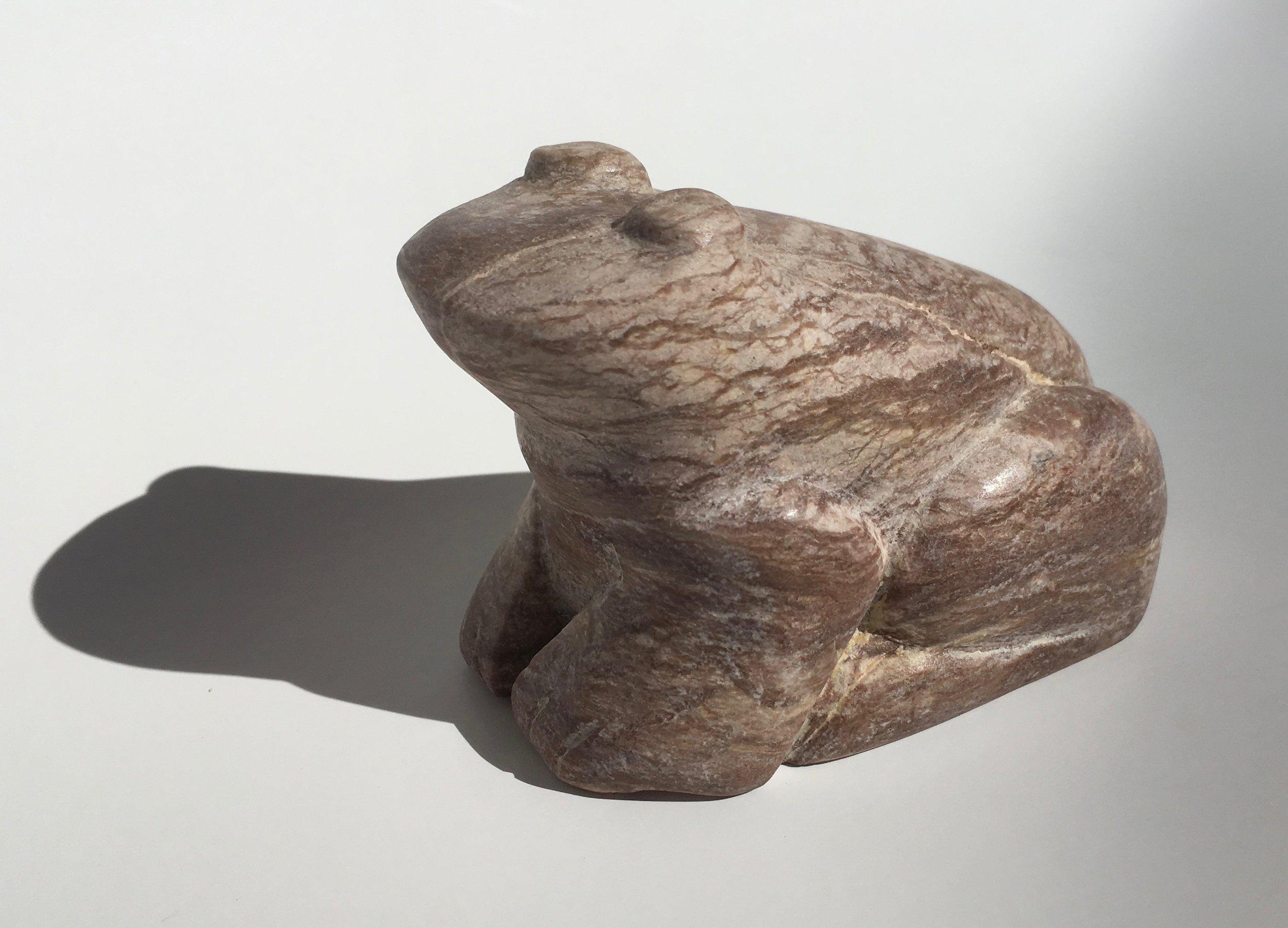 Mocha Frog