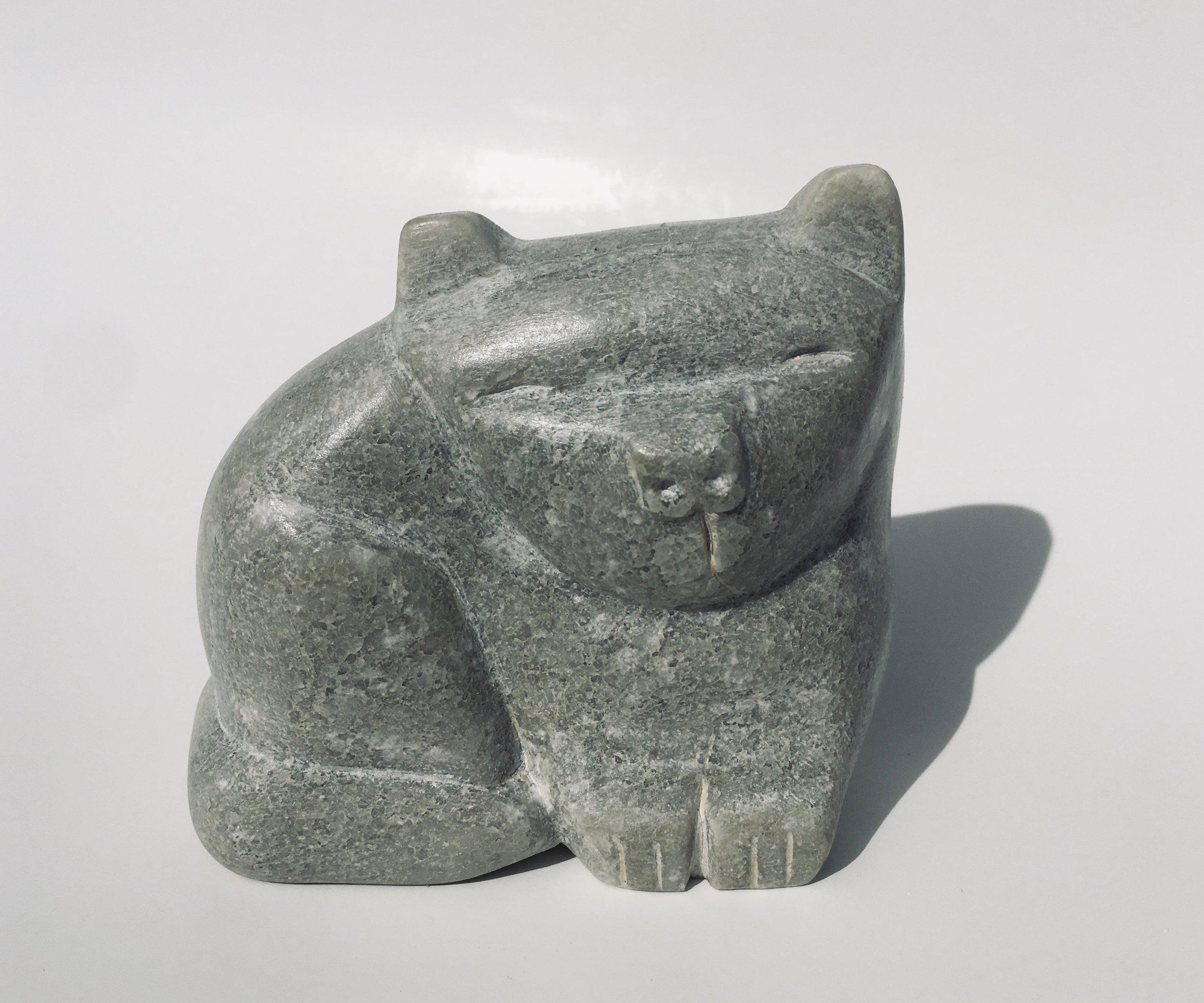 Sage Cat
