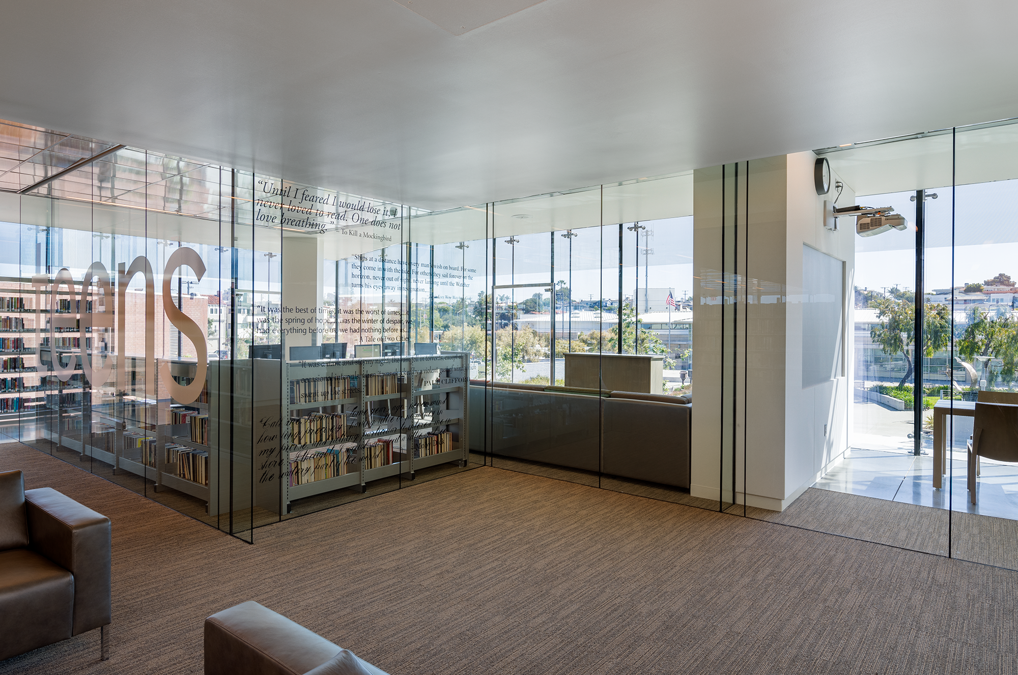 Young adult library