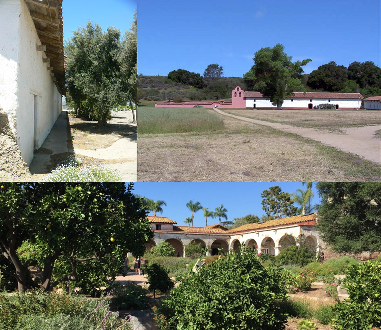 It is no coincidence that the Spaniards were attracted to California. The landscape is similar. The surrounding landscapes of the missions, both natural and cultivated, are as much a part of their architecture as are the buildings.