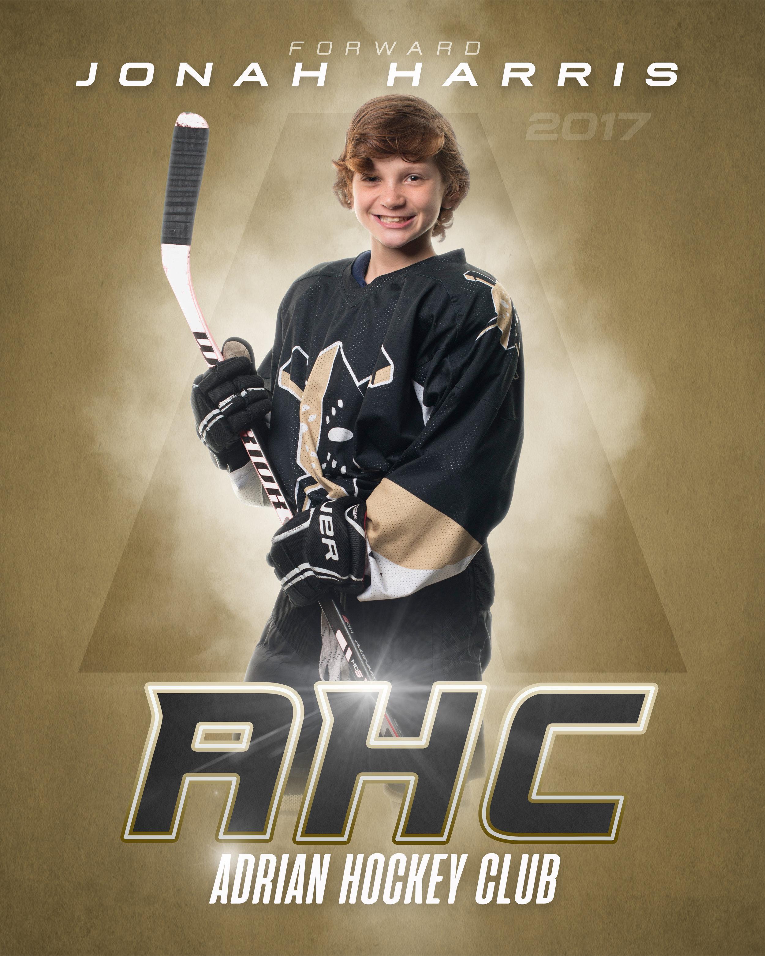 Adrian_Hockey_Club_Individual_16x20.jpg