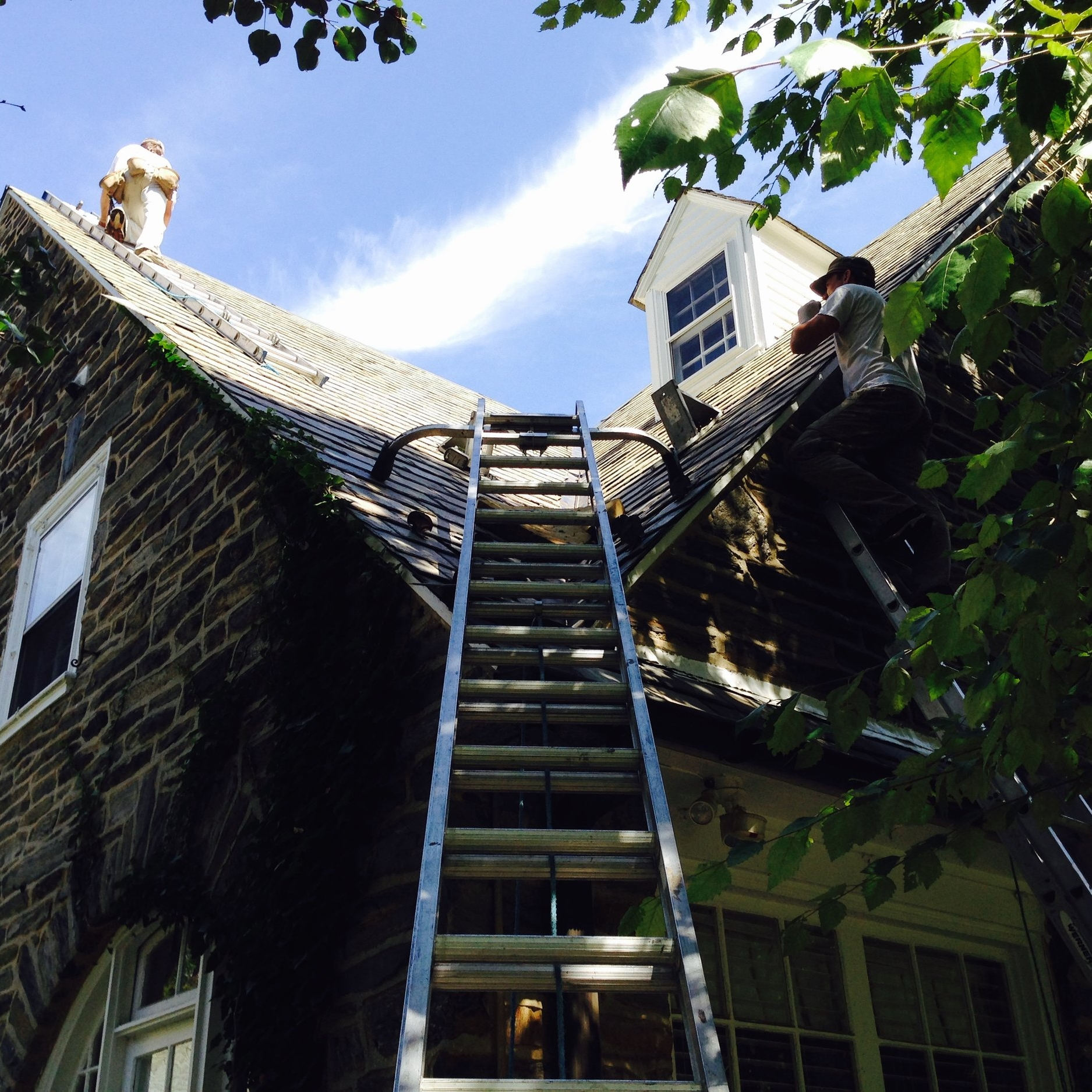 This is our typical view of a steep roof. Pro-tip: if someone accesses your roof or gutters without a ladder guard, then throw that person off your property. Too many unqualified roofers or landscapers crush gutters or crack slate with unprotected ladders. You might think you are saving money, but the subsequent leaks are far more expensive to repair.