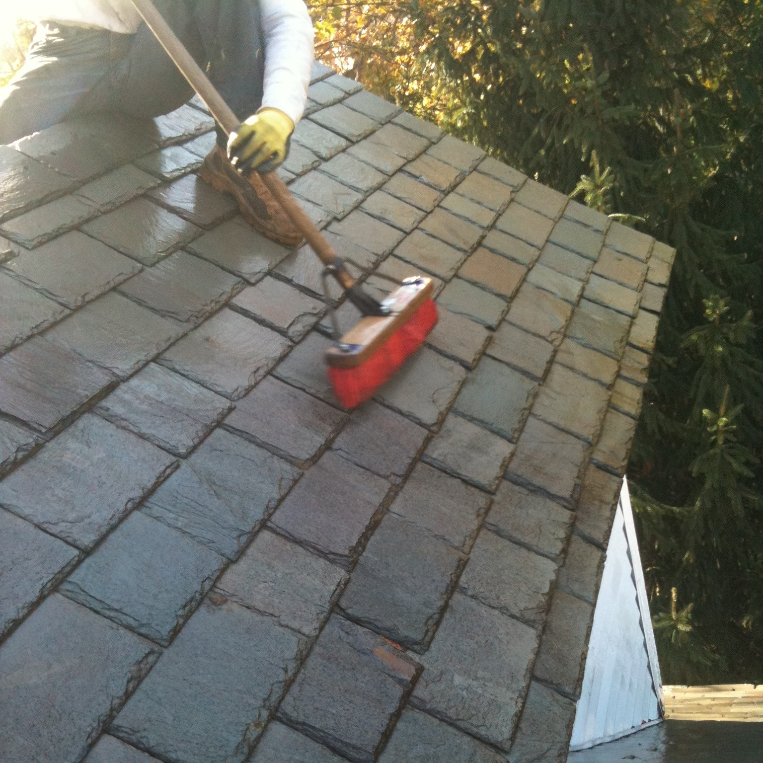 Architectural fungicides, commonly used for delicate gravestone / objects conservation, work very well on slate roofs, especially with a little brushing action. The added advantage is that we can assess broken or brittle pieces of slate that would otherwise remain hidden under layers of dark grime.