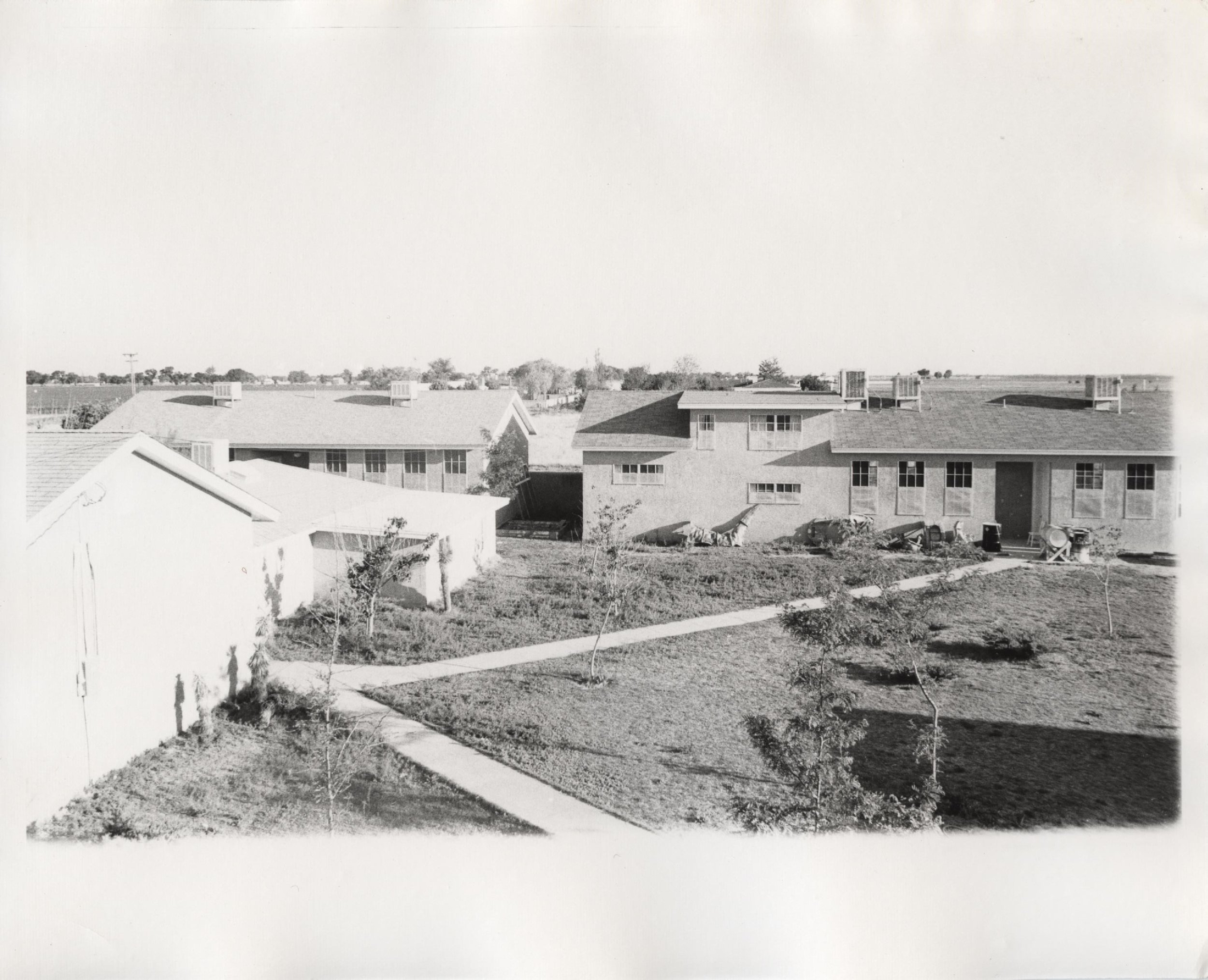 Early compound looking S.jpg
