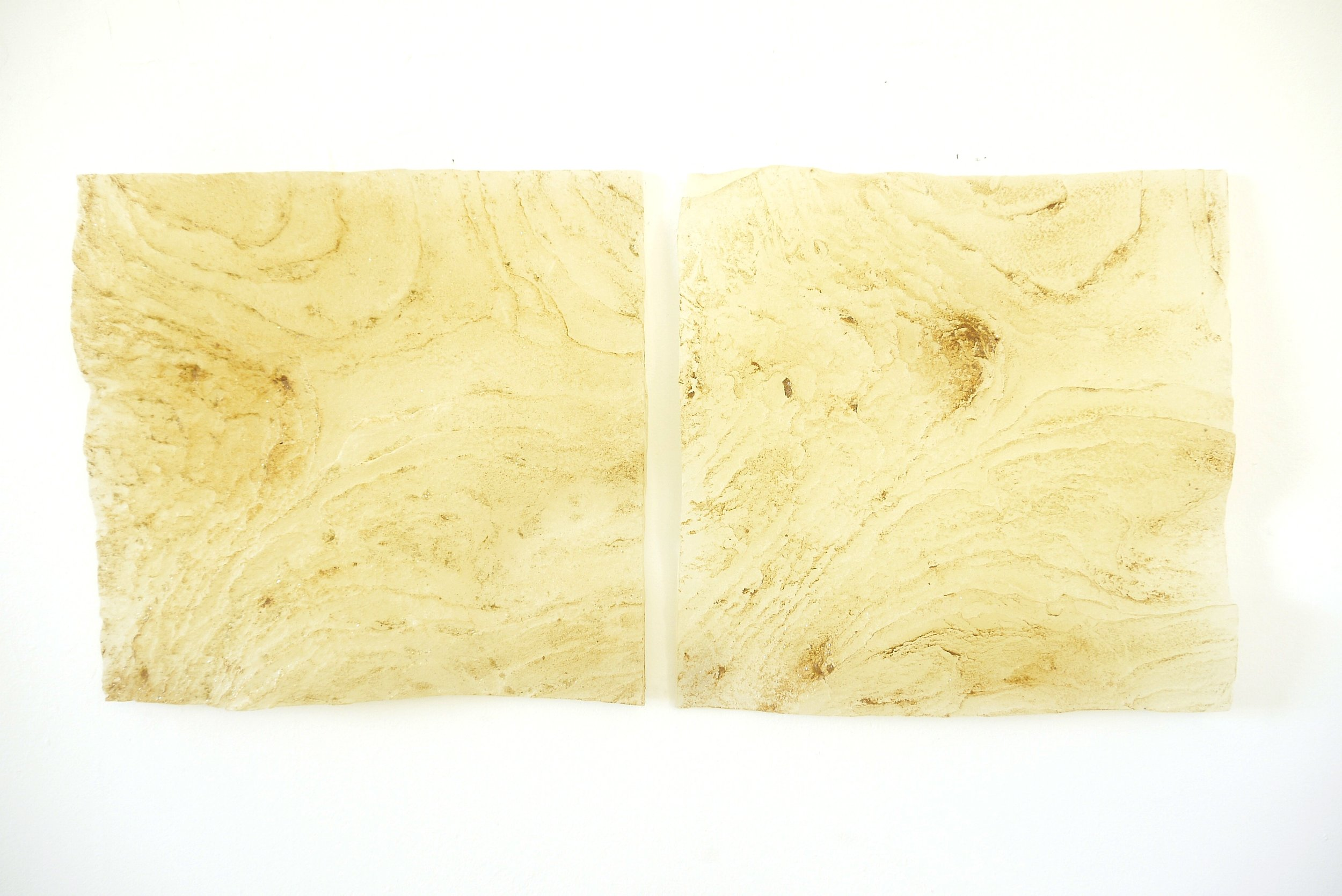 AMoCA Collection    Embedded Pair (micaceous clay), resin, clay, 12x12x2, 2018