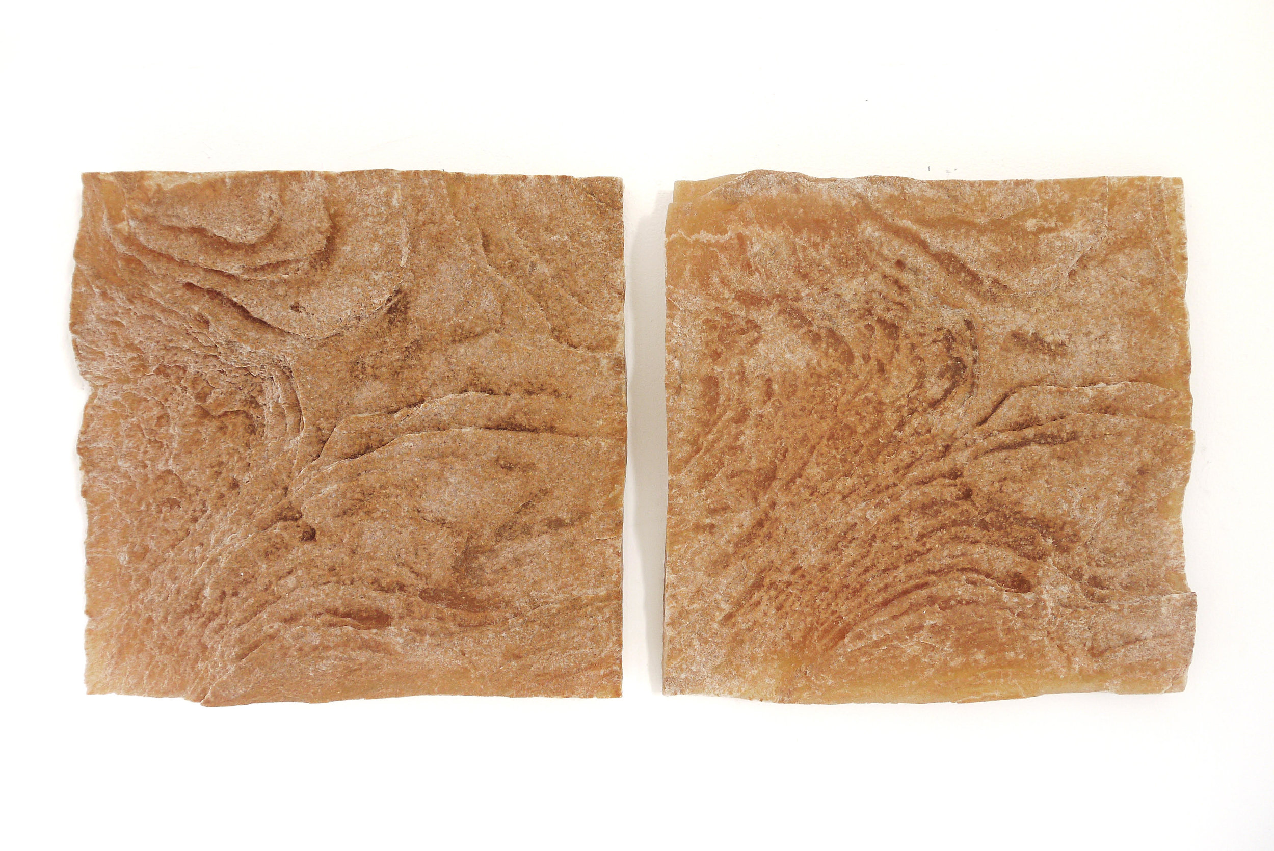 AMoCA Collection    Embedded Pair (dried micaceous clay) resin, clay, 12x12x2, 2018