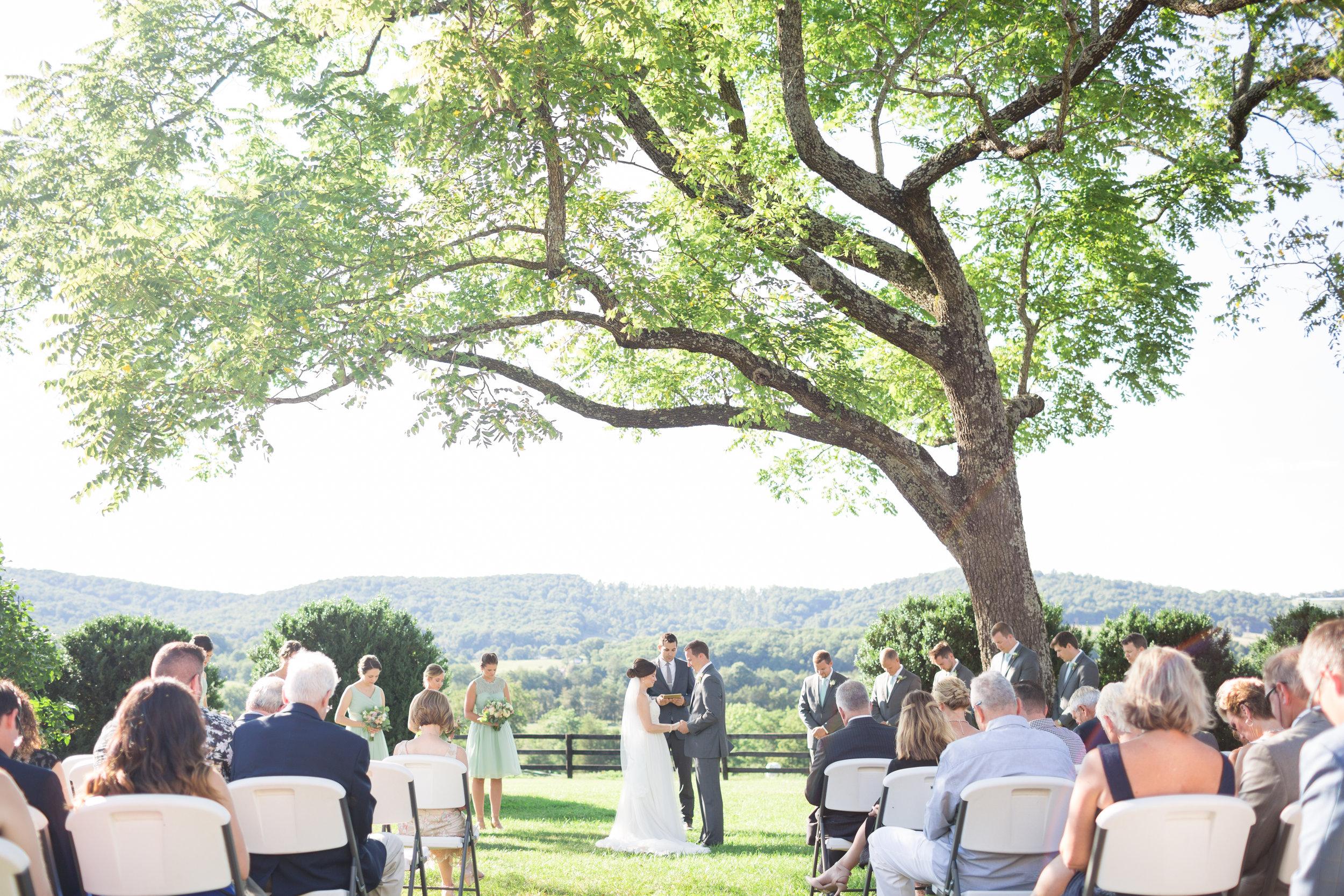 Robbins-Wedding-Favorites-66.jpg