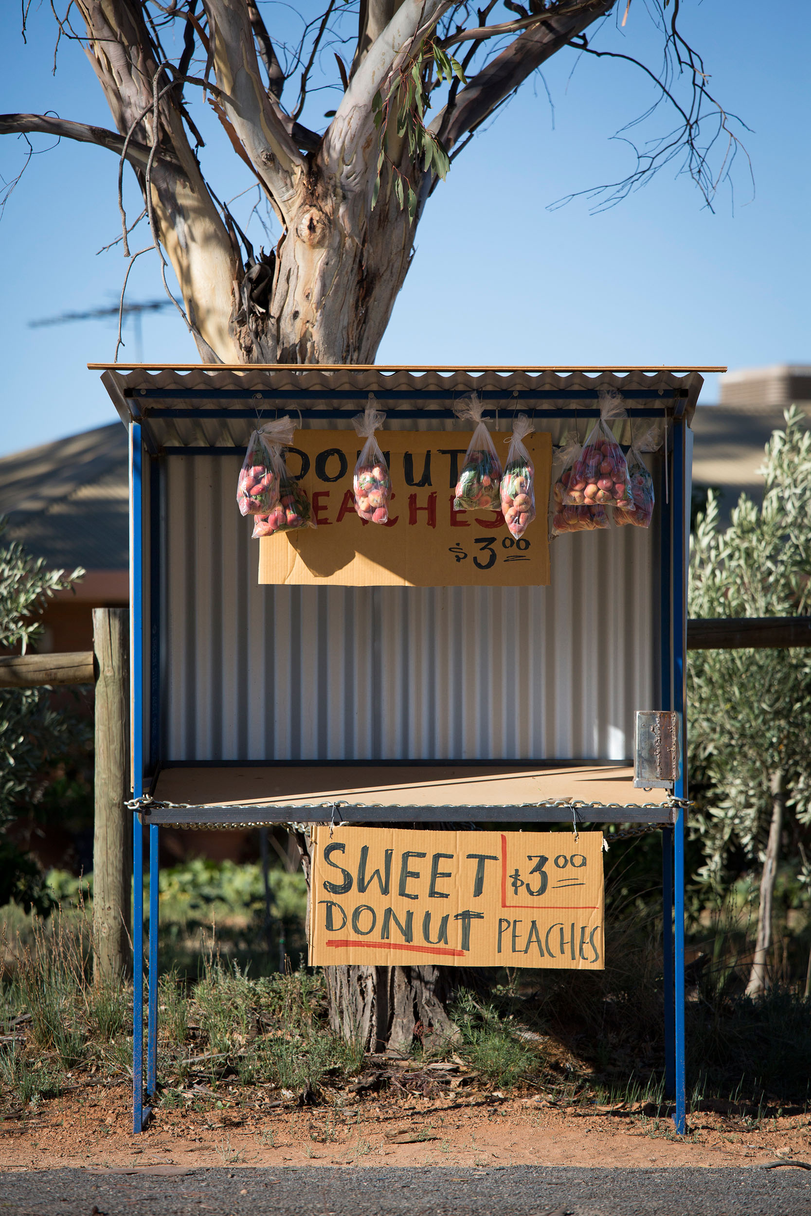 Roadside stall selling donut peaches, Cabarita, VIC.