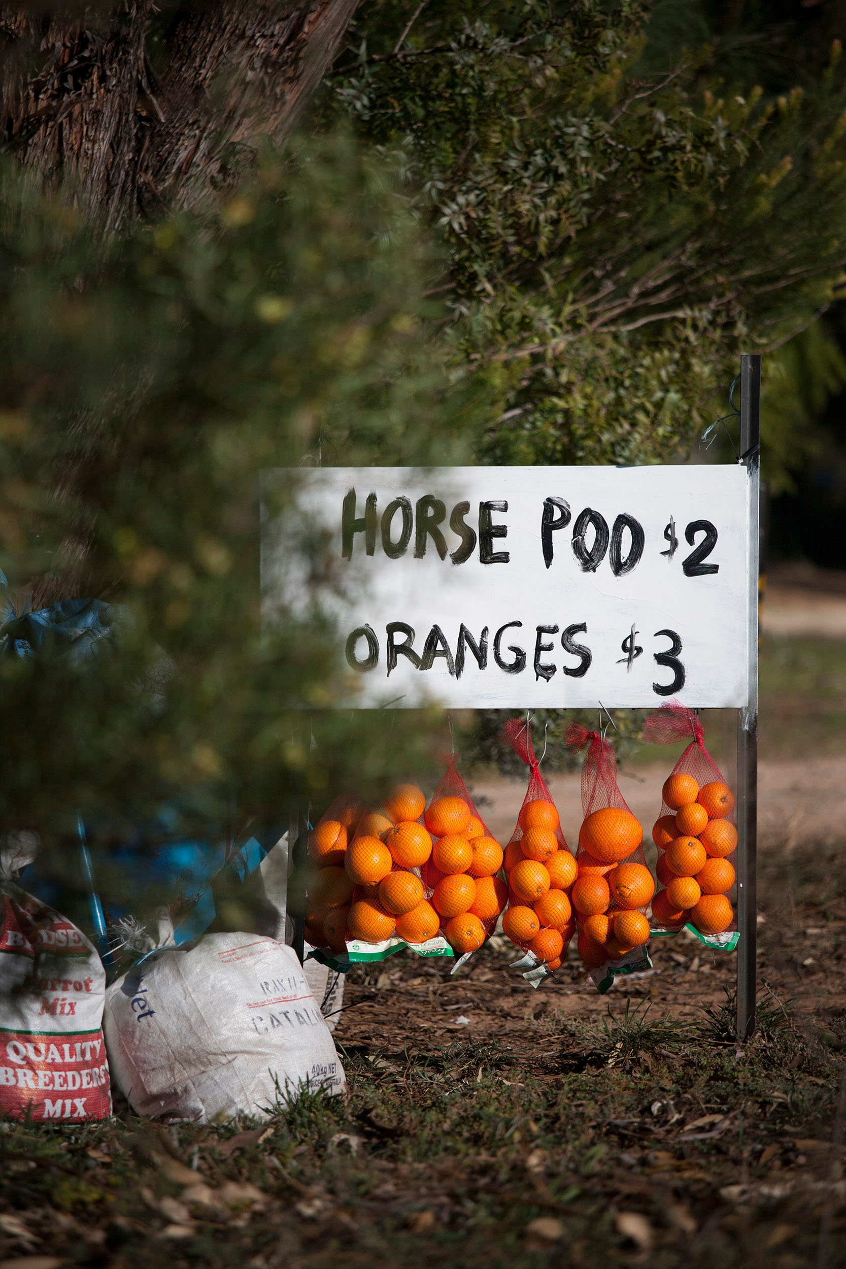 Roadside stall selling horse poo and oranges, Loxton area, SA.