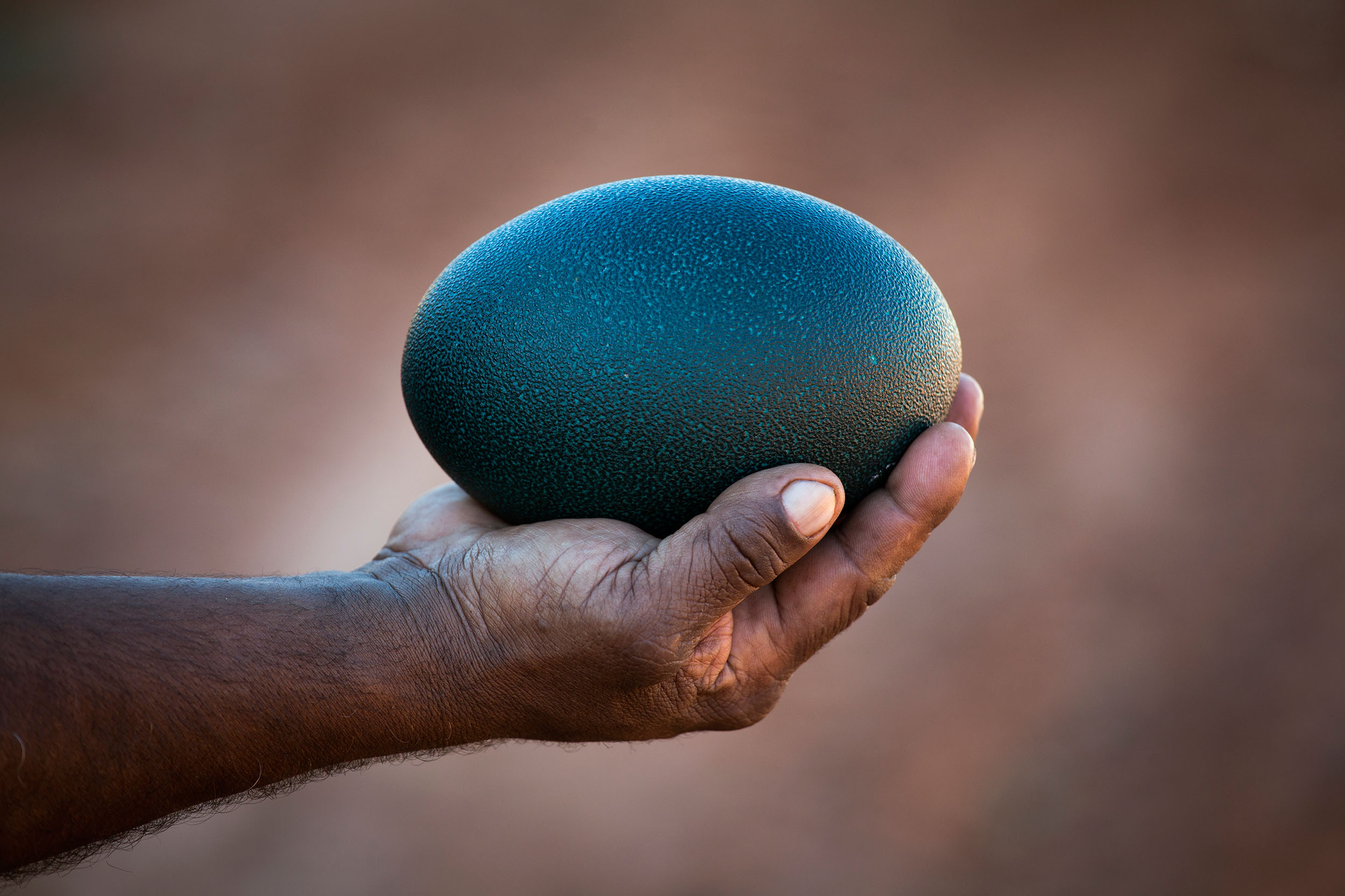 Peter holding an emu egg, Mutawintji National Park, NSW.