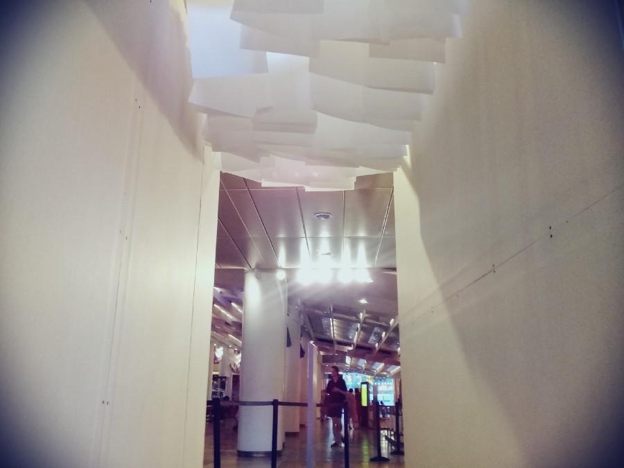 Drying prints hung above the structure's corridor. Photo: Saeed Taji Farouky