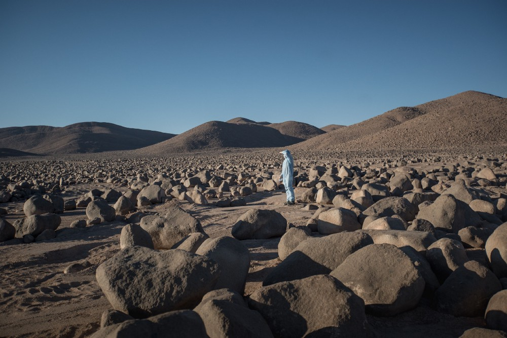 Scientists look for remaining signs of life in the Atacama in the aftermath of climate-change induced rains.