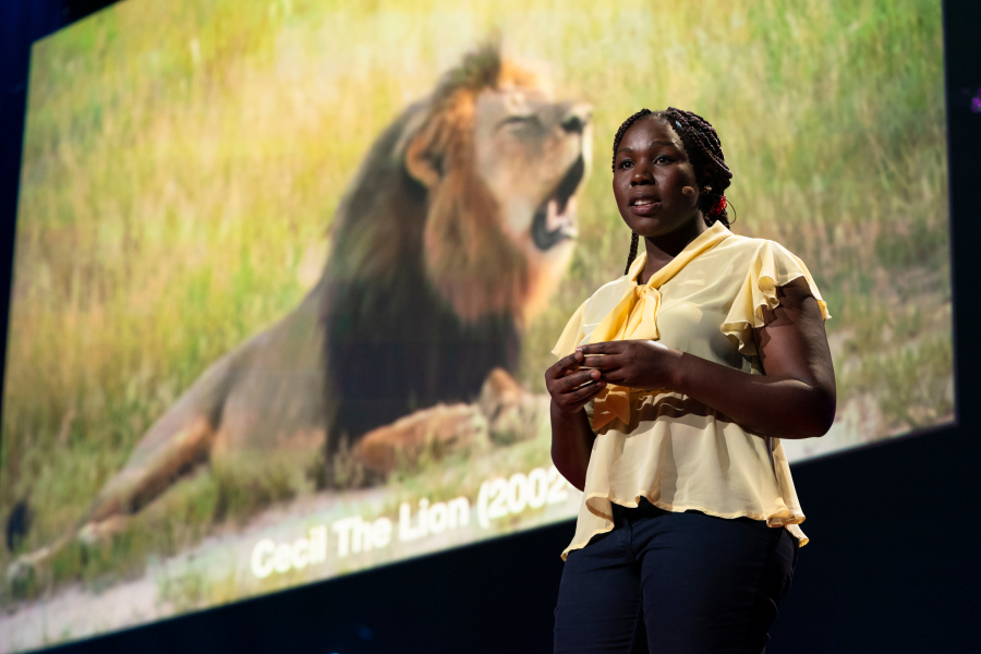 Conservationist Moreangels Mbizah worked with the famous Cecil the lion — until he was shot by a trophy hunter. How can we prevent the next tragedy? By enlisting locals to protect the species they coexist with. Mbizah speaks during TED Fellows Session 2 at TED2019: Bigger Than Us, on April 15, 2019 in Vancouver, BC, Canada. (Photo: Ryan Lash / TED)