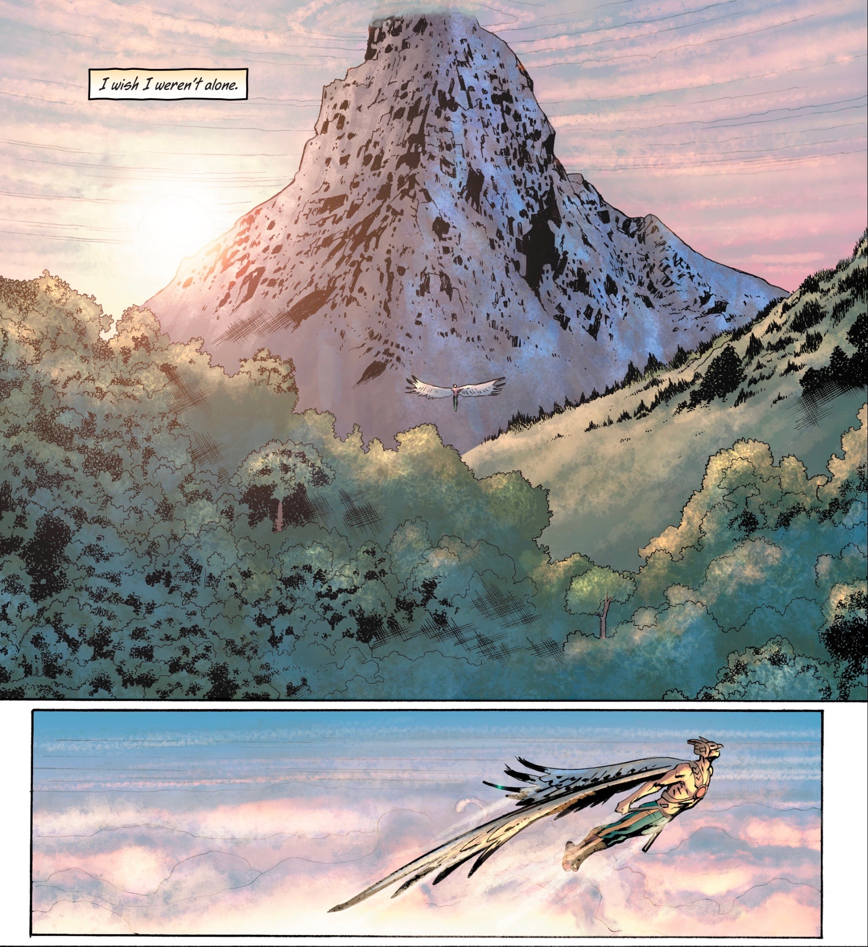 Perhaps the most important panels in the entire series are those in which Hawkman takes to the sky. Artwork from  Hawkman #3.