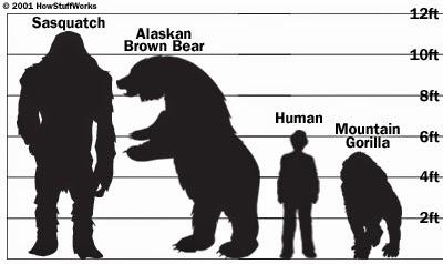 bigfoot-size.jpg