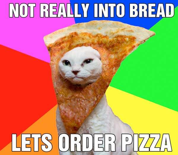 izzacats_order.jpg